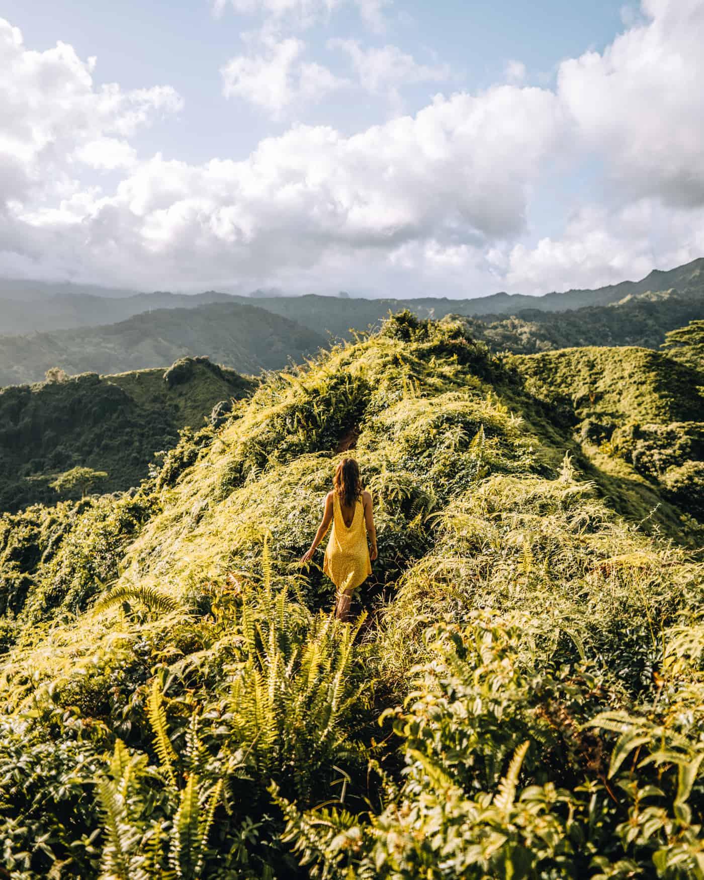 Kauai - Strände, Wandern & Ausflugsziele: Grat am Kuilao Ridge Trail