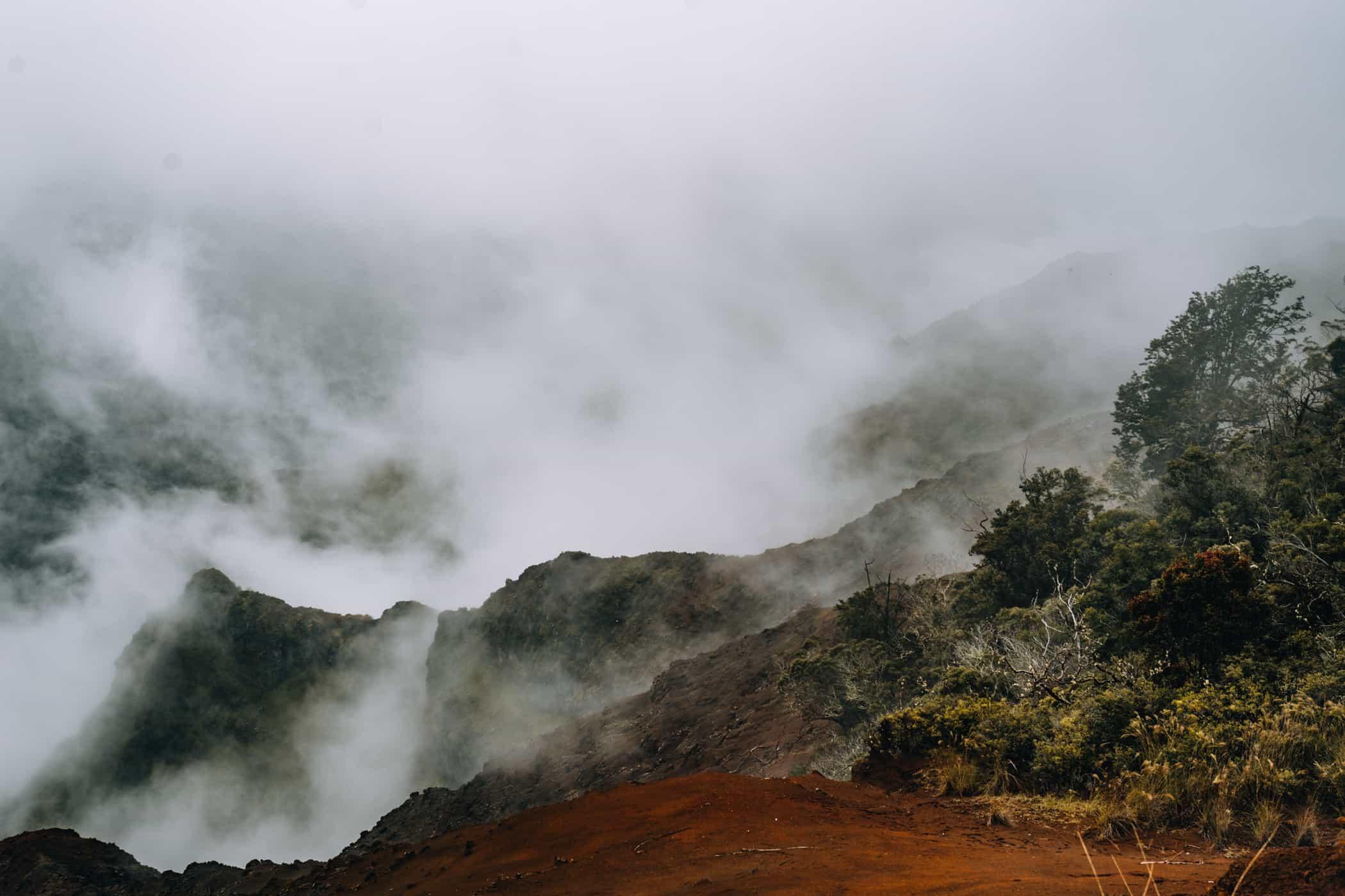 Kauai - Strände, Wandern & Ausflugsziele: Waimea Canyon Lookout