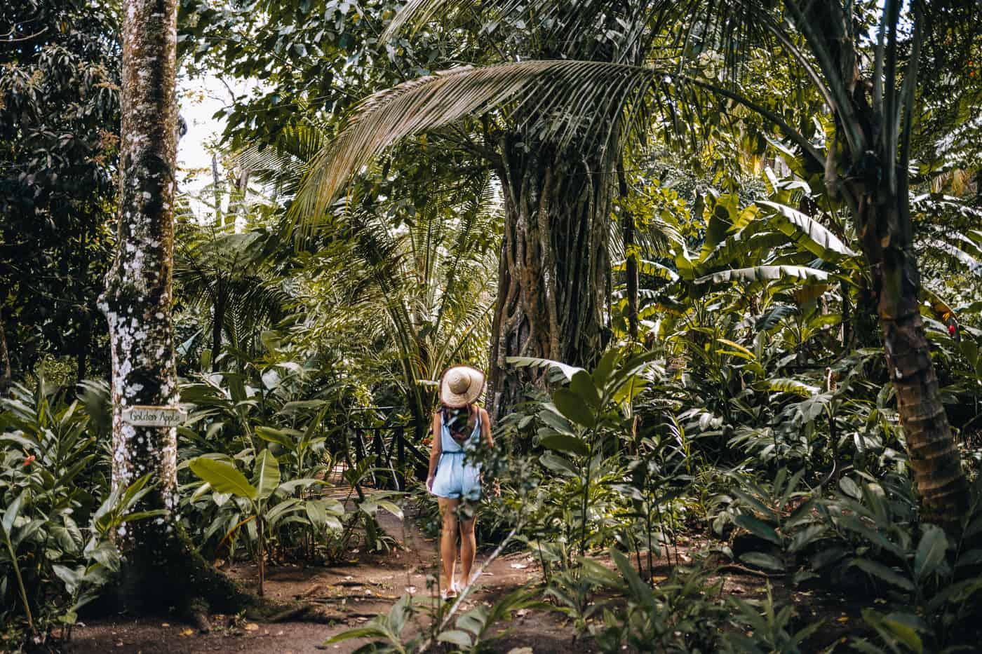 Saint Lucia - Tipps, Sehenswürdigkeiten, Strände & Ausflugsziele auf der Karibik-Insel: Fond Doux Plantation