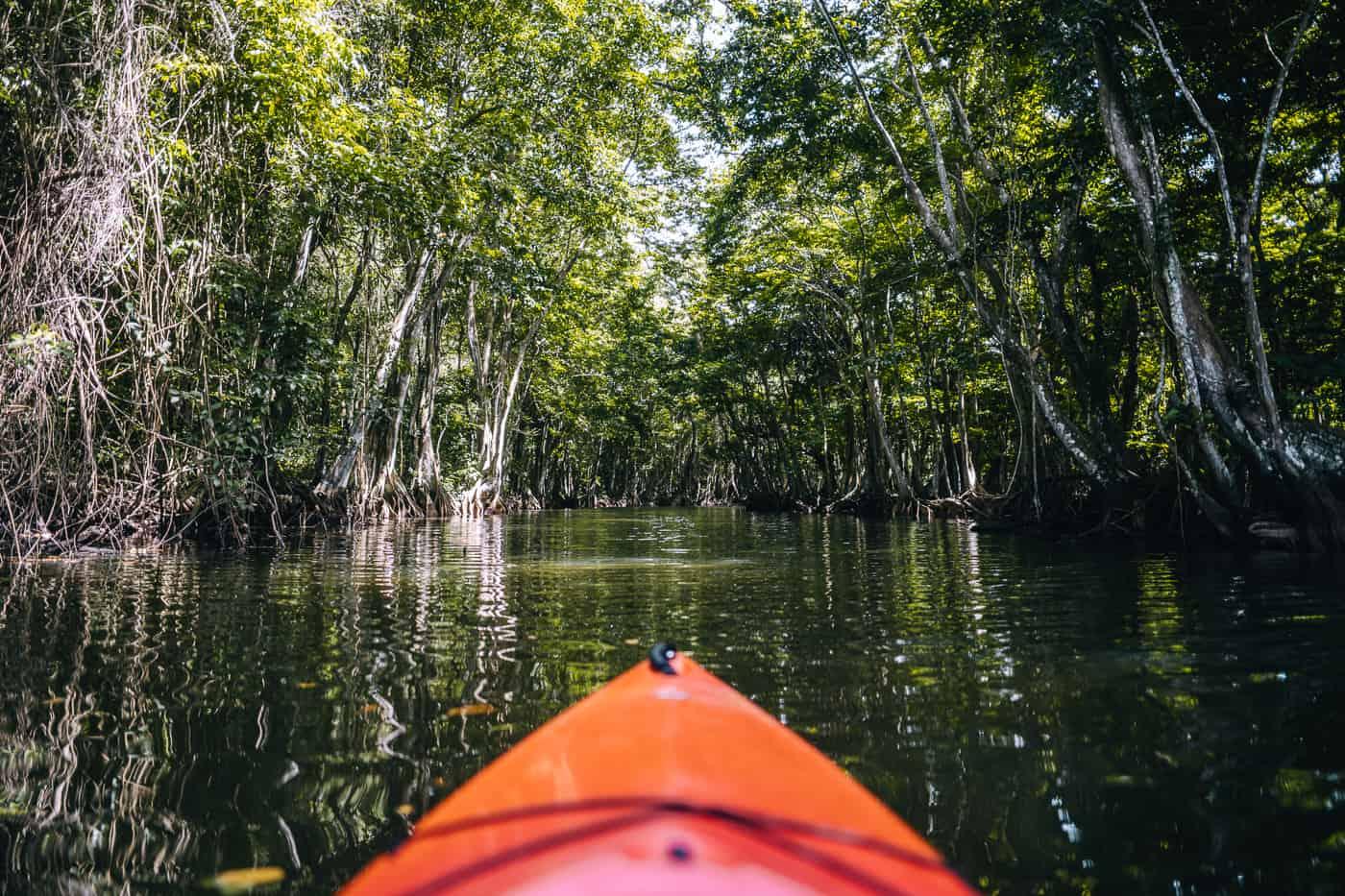 Saint Lucia - Tipps, Sehenswürdigkeiten, Strände & Ausflugsziele auf der Karibik-Insel: Marigot Bay Kayak