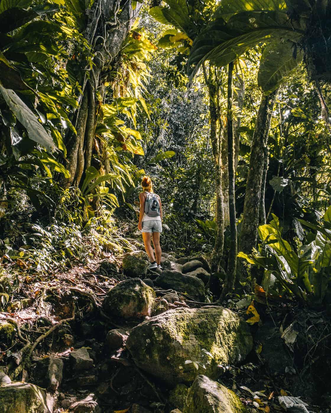 Saint Lucia - Tipps, Sehenswürdigkeiten, Strände & Ausflugsziele auf der Karibik-Insel: Gros Piton