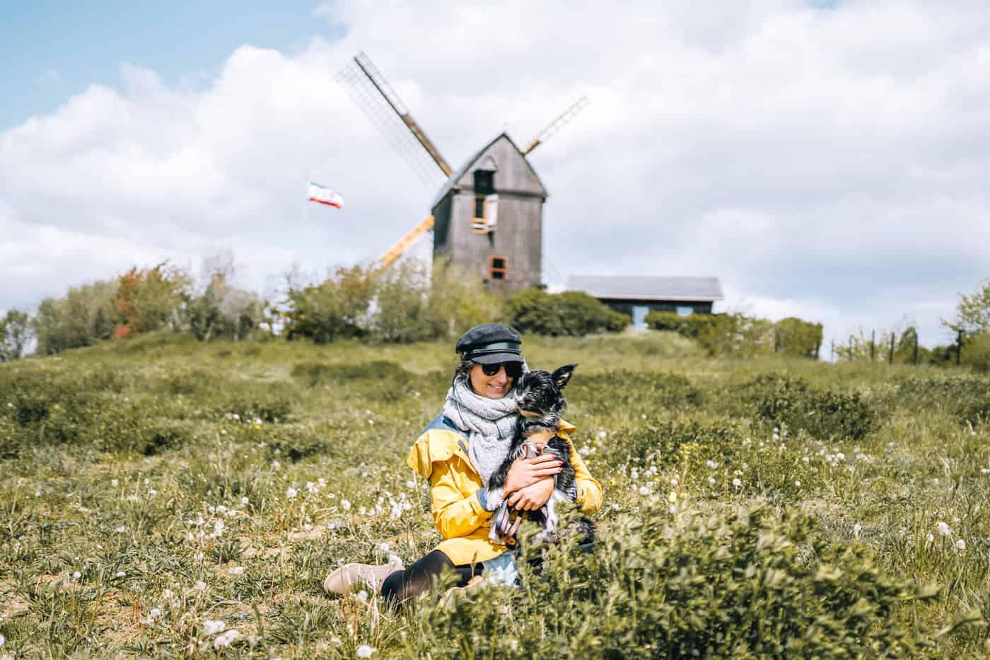 Usedom mit Hund - Inselsafari: alte Post Mühle in Pudagla