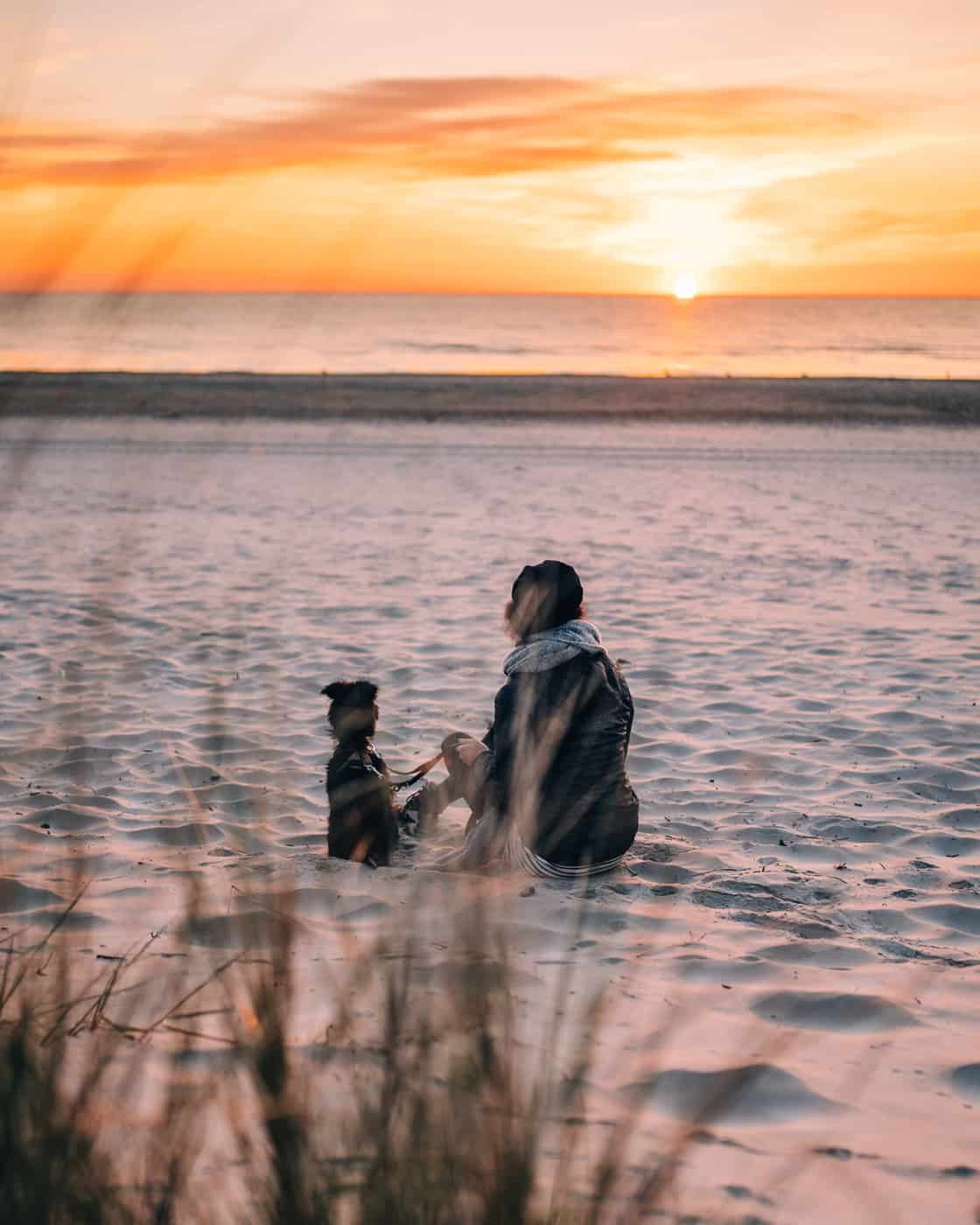 Usedom mit Hund - Sonnenaufgang am Strand in Karlshagen