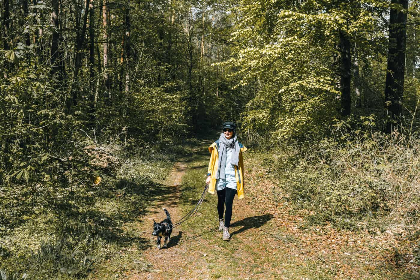 Usedom mit Hund - Wandern auf Usedom mit Hund