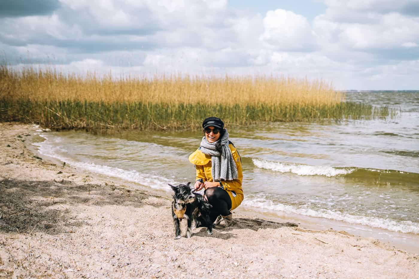 Usedom mit Hund - Wandern zu einsamen Stränden am Achterwasser mit Hund