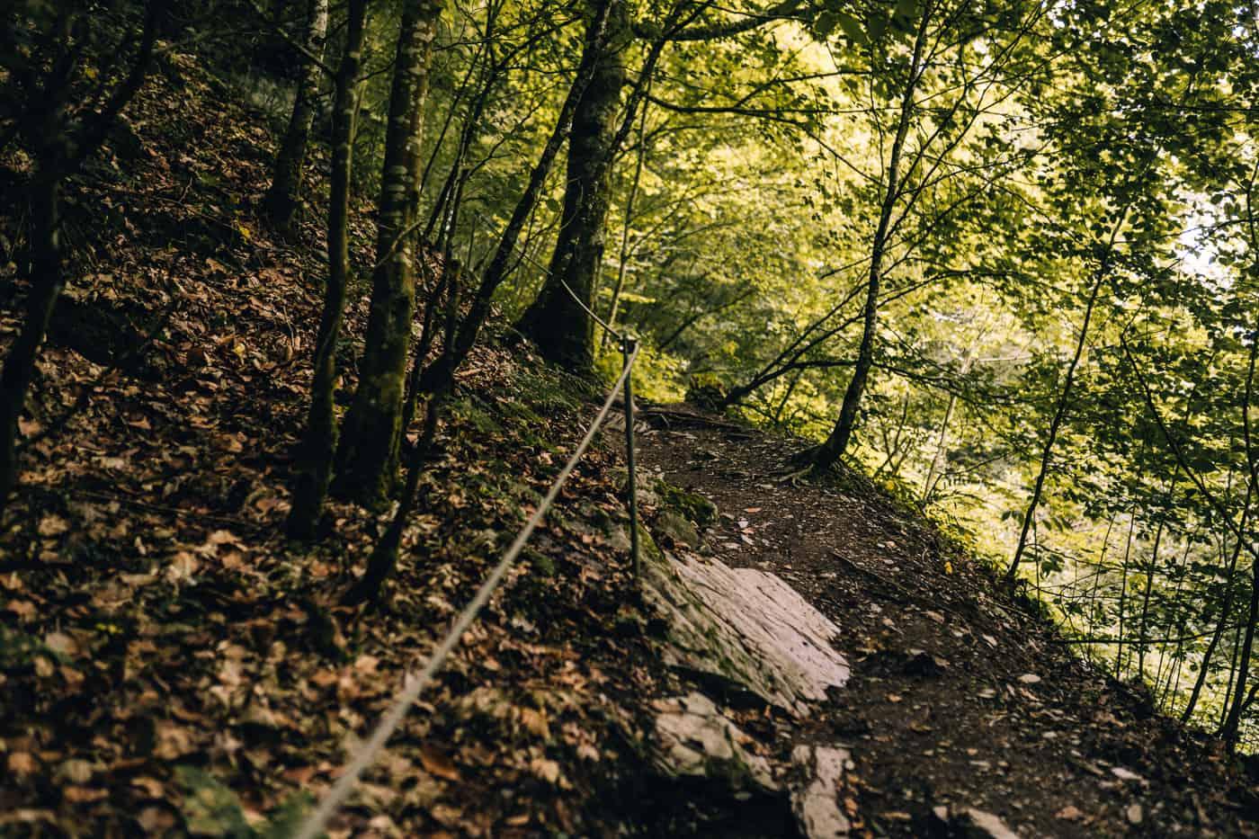 Baybachklamm Traumschleife Wanderung - Auf schmalen Pfaden durch das Baybachtal
