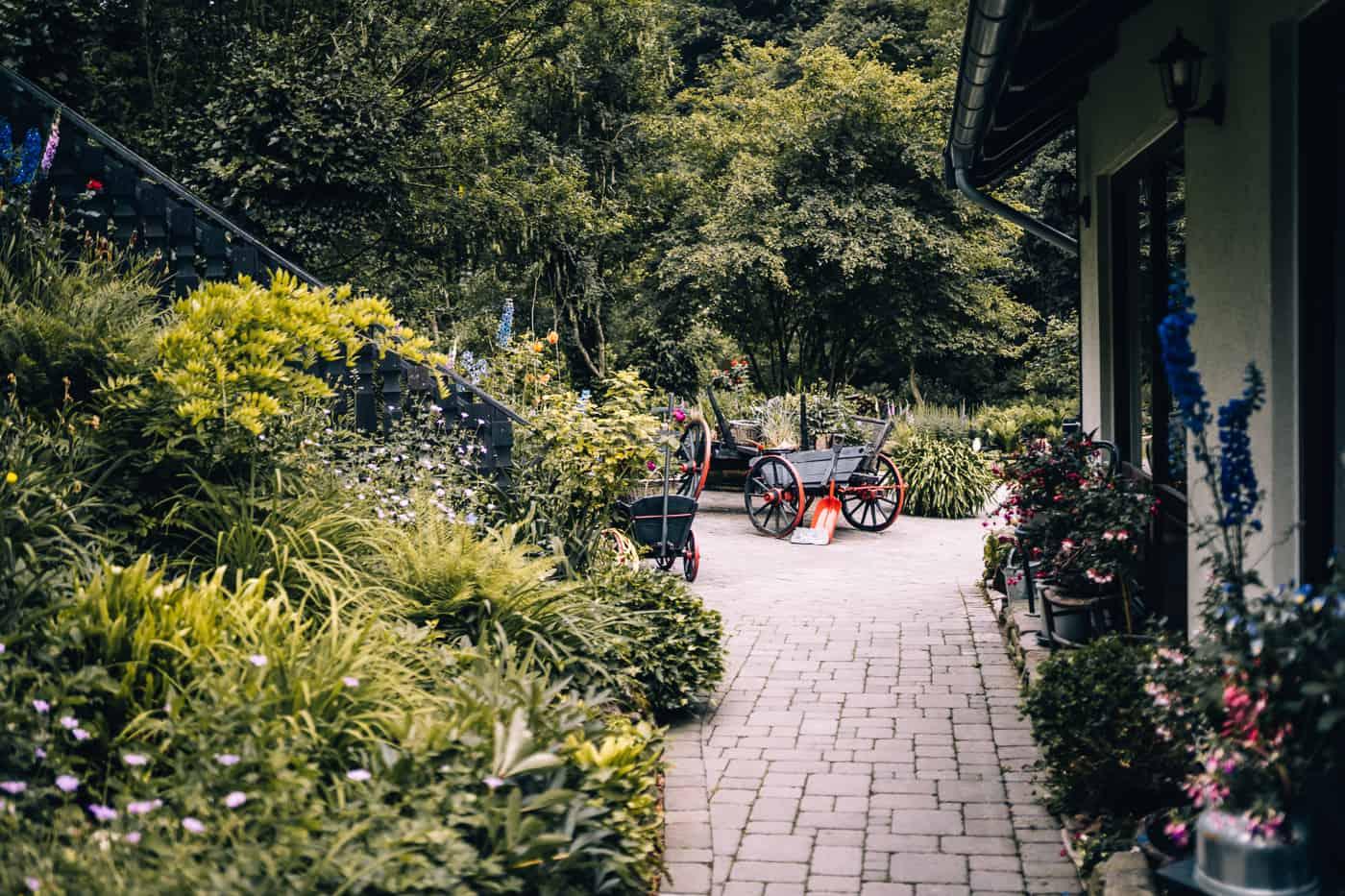 Baybachklamm Traumschleife Wanderung - Einkehr Schmausemühle