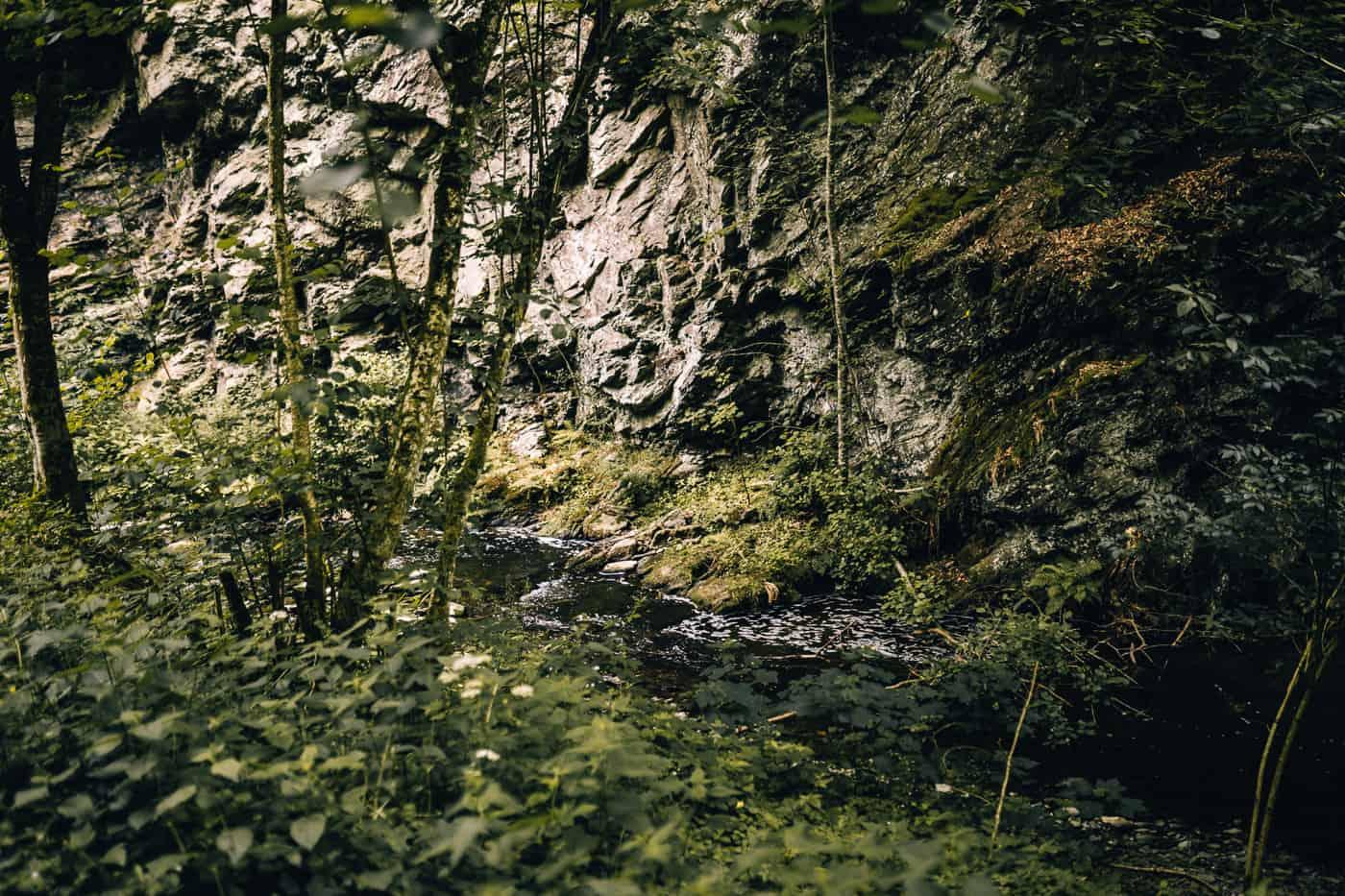 Baybachklamm Traumschleife Wanderung - Von der Baybachklamm ins Prinzbachtal