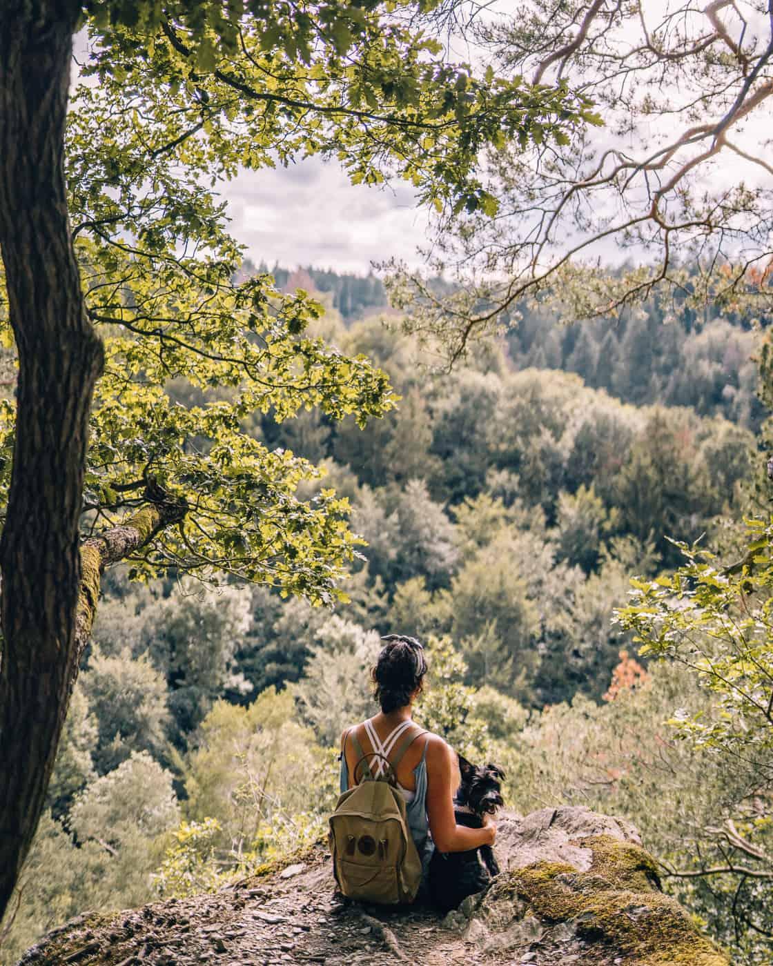 Baybachklamm Traumschleife Wanderung - Vom Buchbachtal durch den mediterranen Eichenwald nach Heyweiler