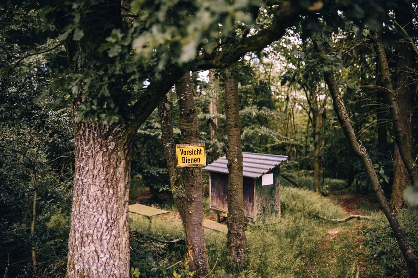 Baybachklamm Traumschleife Wanderung - Imker