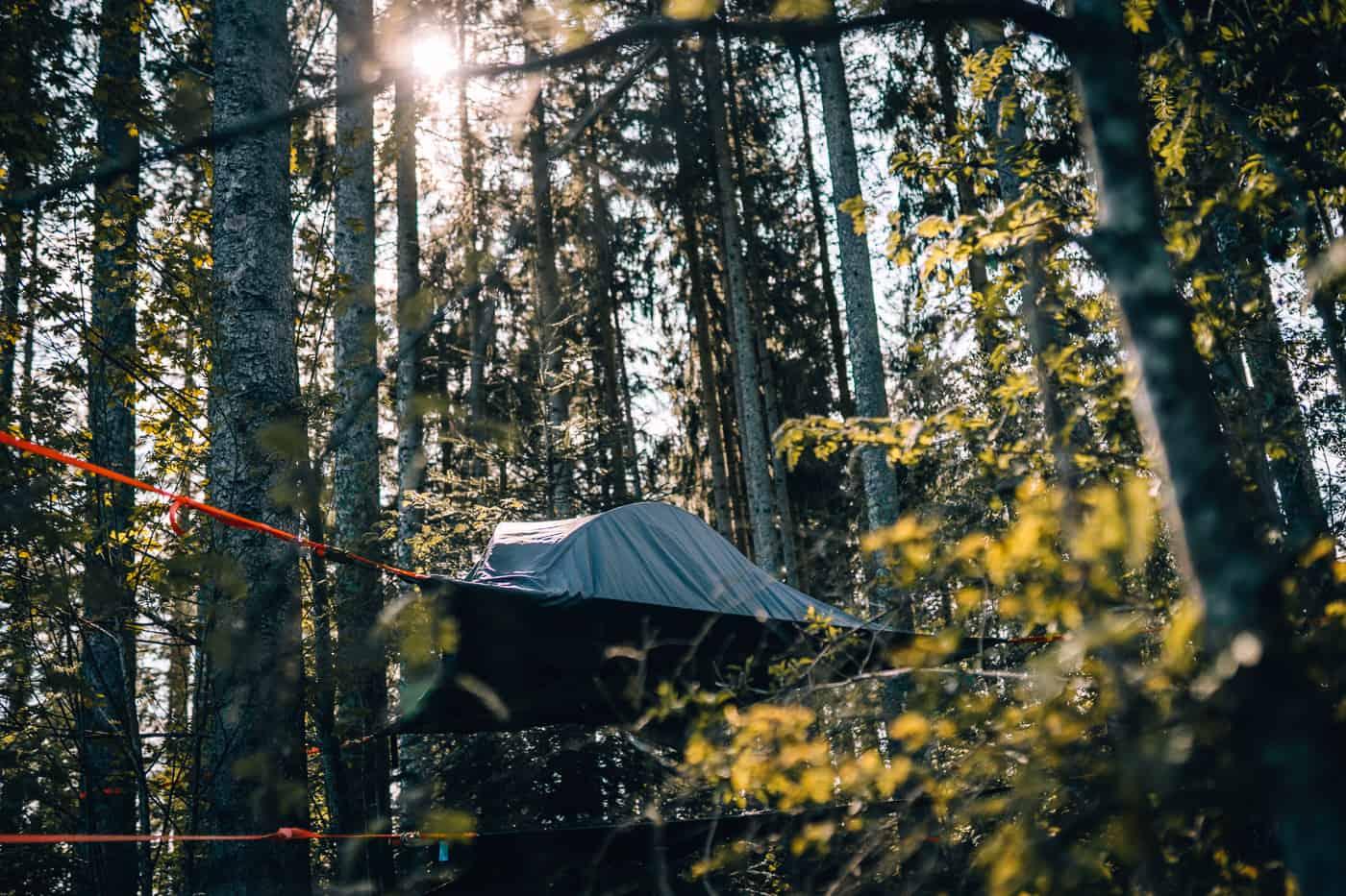 Schluchsee - Glamping Abenteuer im Hochschwarzwald: Schwarzwaldcamp Baumzelt