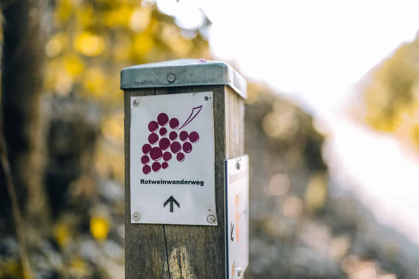 Auf dem Rotweinwanderweg durch das Ahrtal