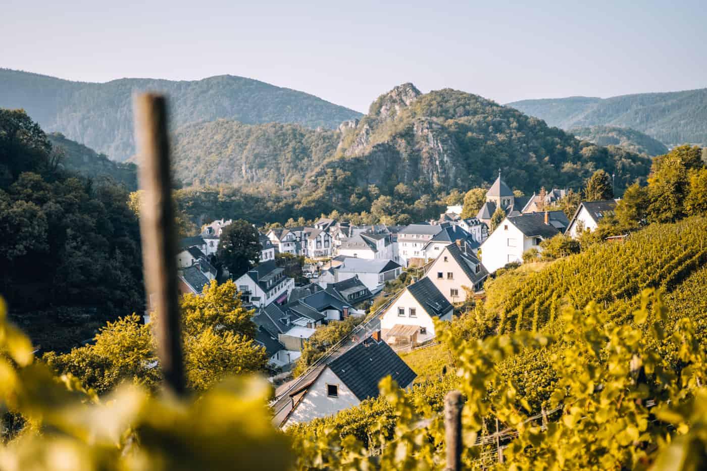 Auf dem Rotweinwanderweg durch das Ahrtal: Altenahr