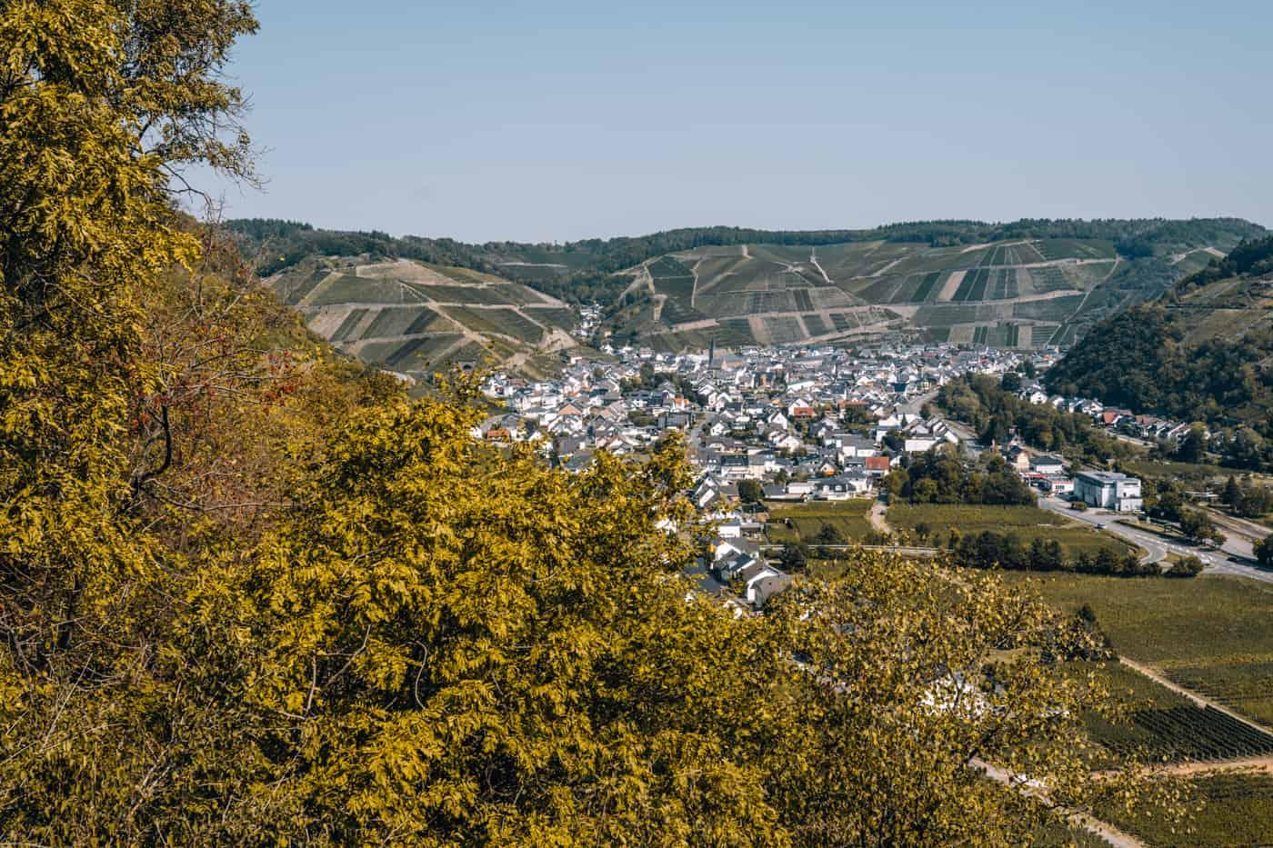 Auf dem Rotweinwanderweg durch das Ahrtal: Dernau