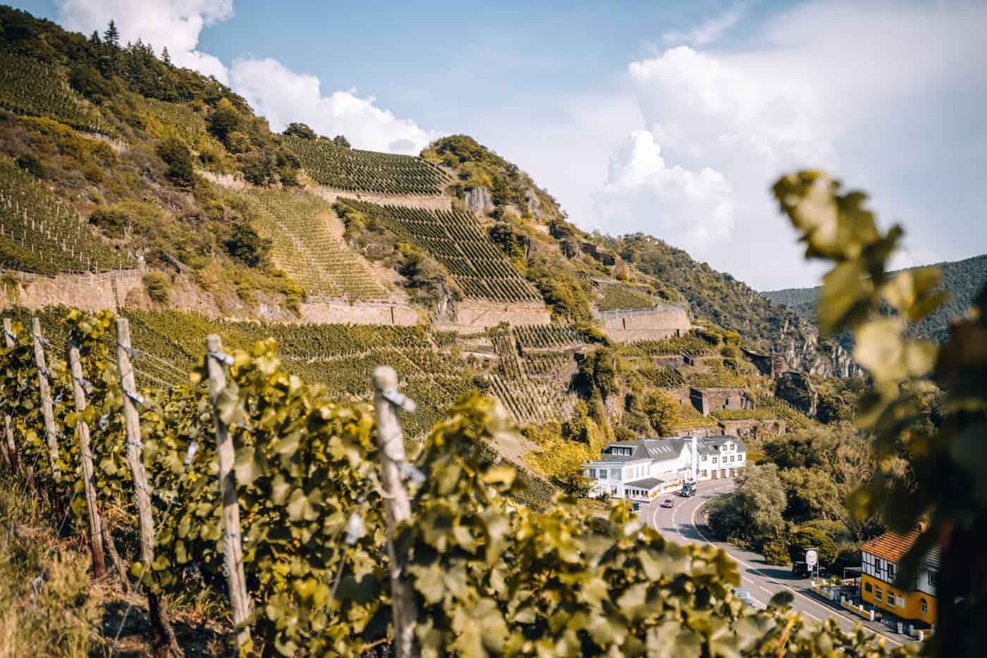 Auf dem Rotweinwanderweg durch das Ahrtal: Marienthal