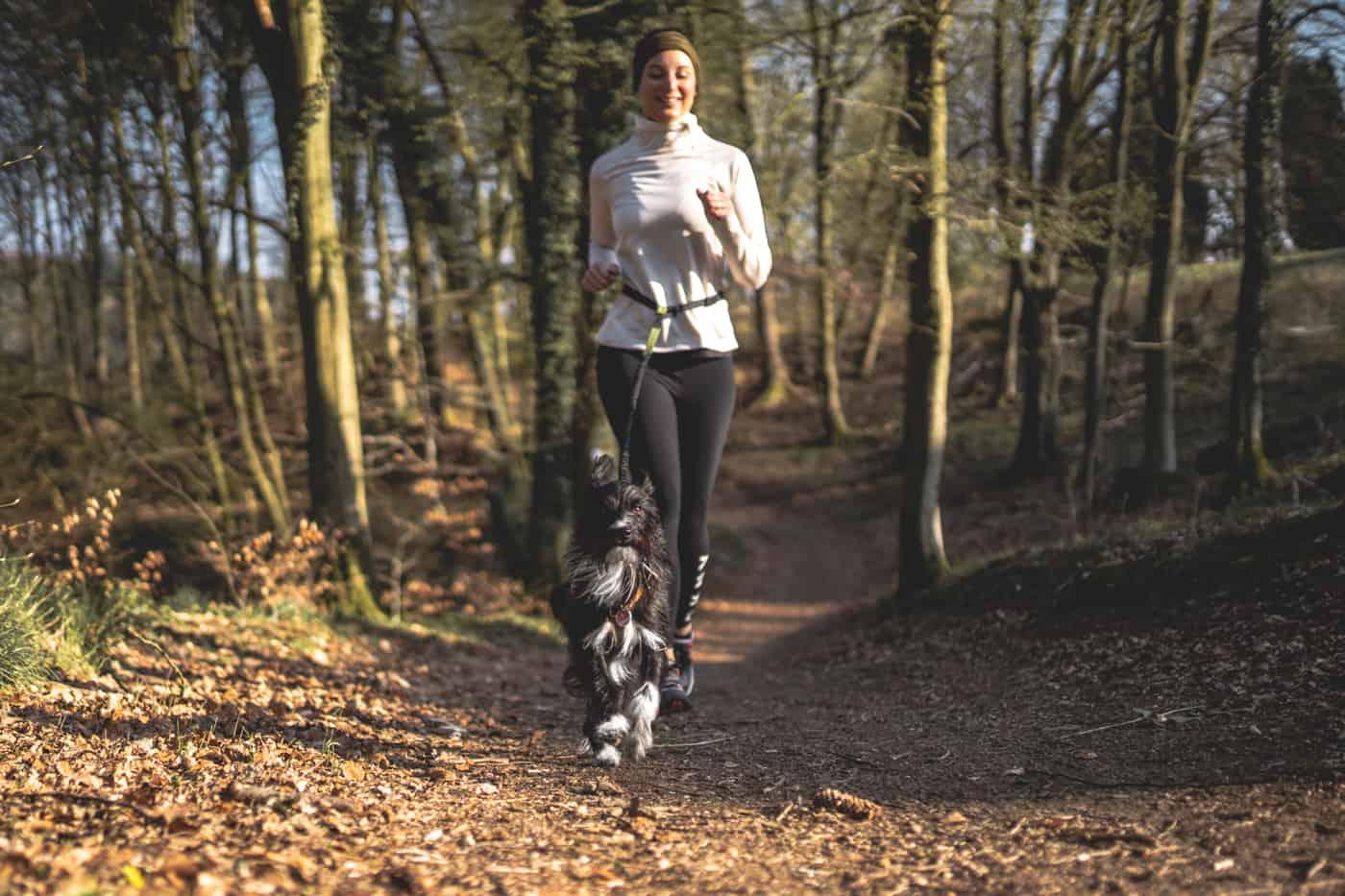 Laufen mit Hund - meine Tipps & Erfahrungen + Trainingsanleitung