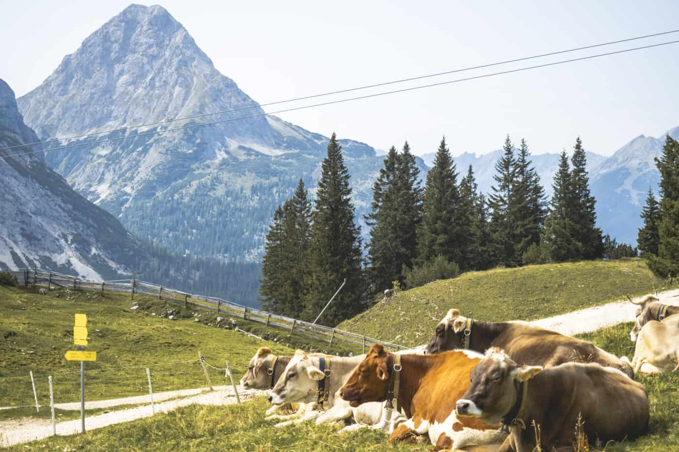 Lermoos - die schönsten Wanderungen & Ausflugsziele in der Zugspitz Region #5 - Zugspitz Tour von Ehrwald