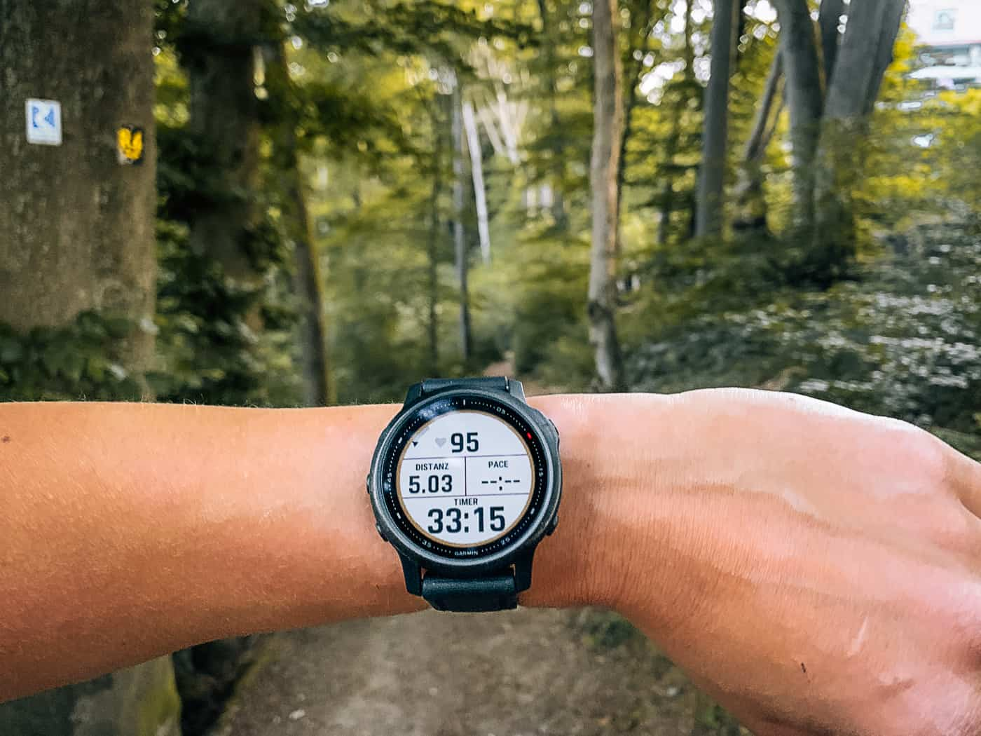 Garmin vs Apple Watch - Die beste Smartwatch für Outdoor-Reisende?!