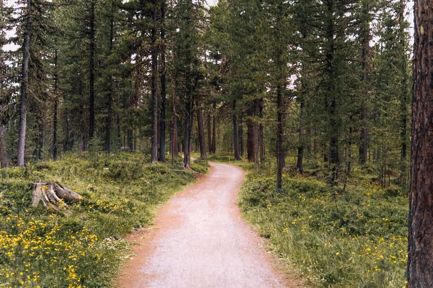Wandern in Pontresina - 5 unvergessliche Bergtouren: Lej da Straz Rundwanderung