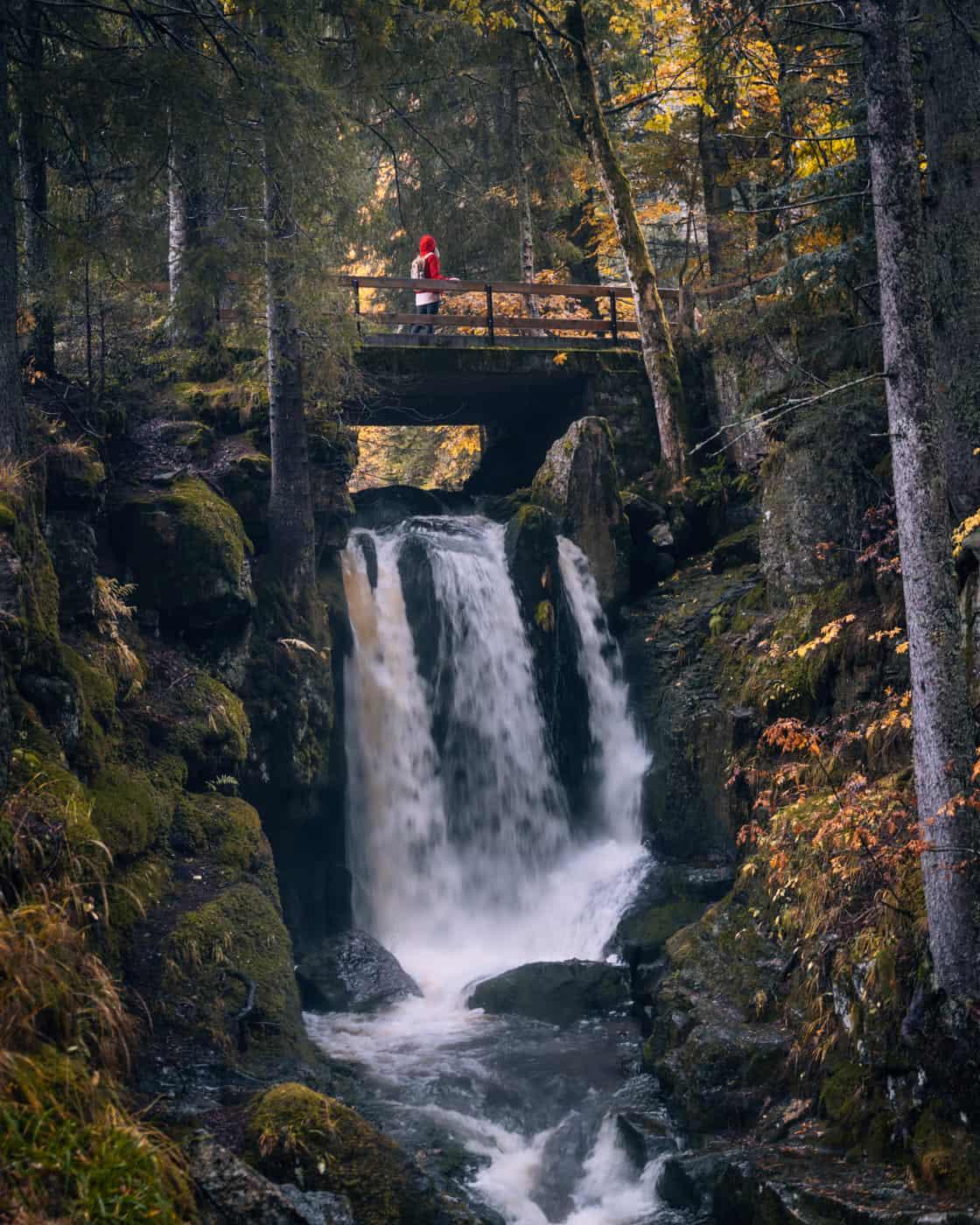 Wandern im Südschwarzwald - die schönsten Touren: Menzenschwander Geißenpfad