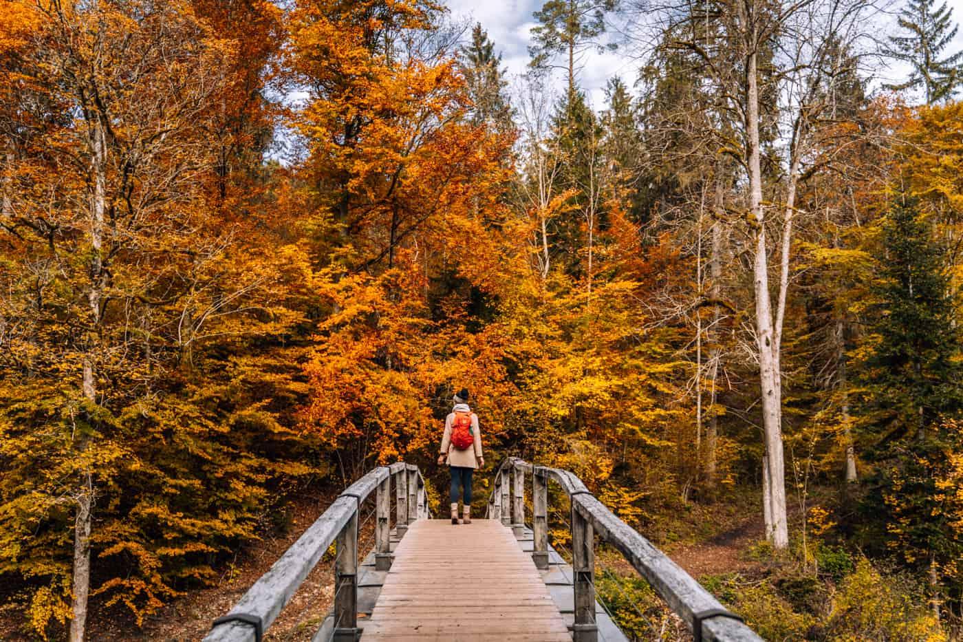 Wandern im Südschwarzwald - die schönsten Touren: Wutachschlucht