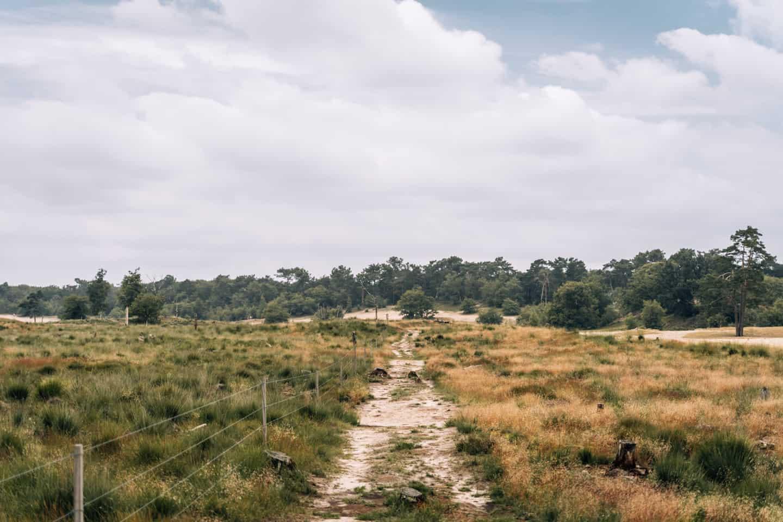 Rund um 's-Hertogenbosch - Camping im Herzen von Brabant: Nationalpark De Loonse en Drunense Duinen