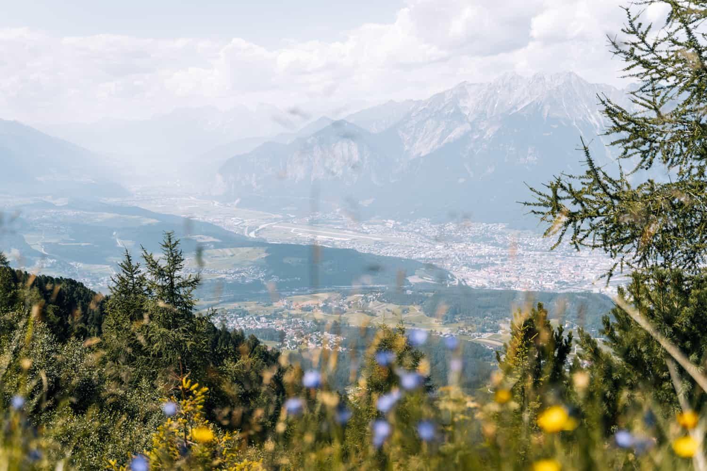 Innsbruck mit Hund - Wanderung Zimmerbergklamm zur Neuen Alplhütte