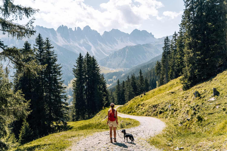 Innsbruck mit Hund - Wanderung Kemater Alm Salfeinsee Grieskogel